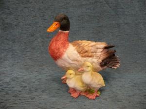 Pato con crías