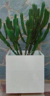 Maceta cuadrada Esmeralda blanco