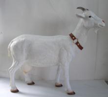 Cabra grande